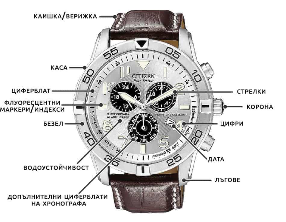 Анатомия на часовника